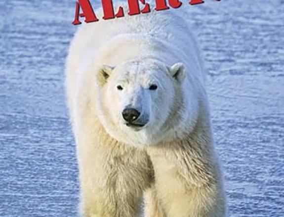 Polar Bear Alert! reader